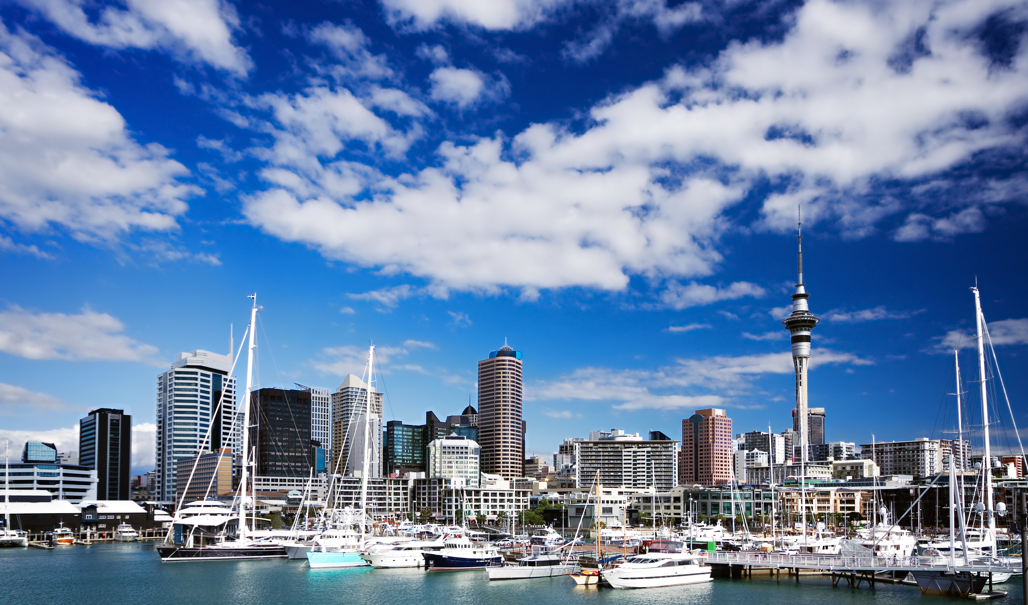 NZ Leadership Header Image
